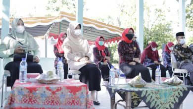 Ketua TP PKK NTB, Keluarga Sehat Dimulai Sejak Pernikahan