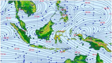 Waspada Angin Kencang di Wilayah Nusa Tenggara Barat